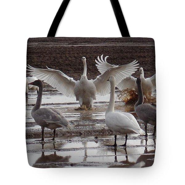 Trumpeter Swans Landing Tote Bag by Karen Molenaar Terrell