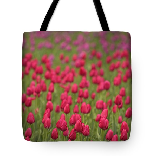 Tulip Beds Forever Tote Bag