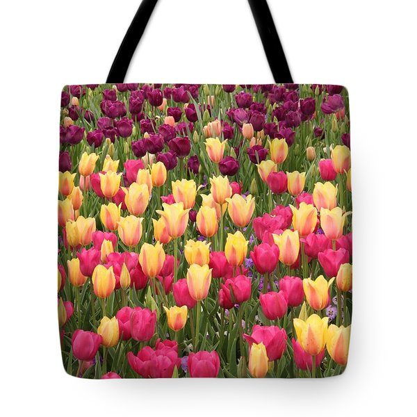 Tote Bag featuring the photograph Tulips by Elizabeth Budd