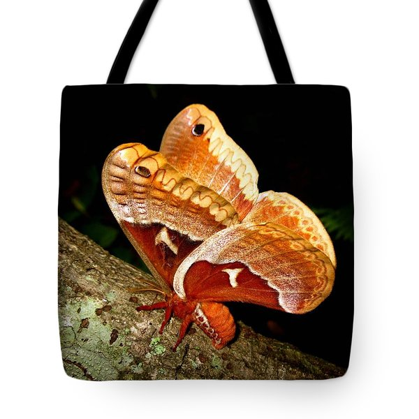Tuliptree Silkmoth Tote Bag