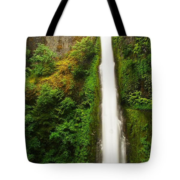 Tunnel Falls  Tote Bag by Jeff Swan