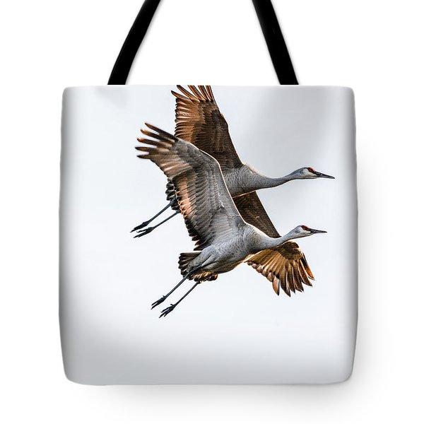 Two Sandhill Cranes Tote Bag