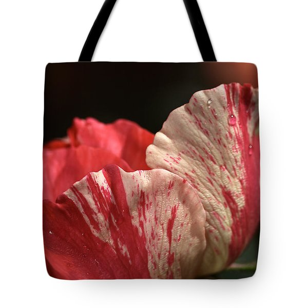 Two Toned Rose Tote Bag by Joy Watson
