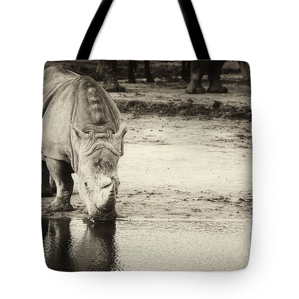 Two White Rhinos  Tote Bag