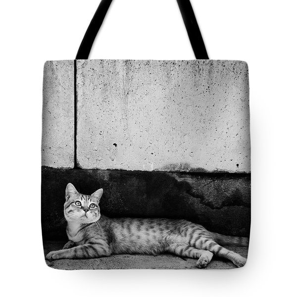 Tote Bag featuring the photograph Untitled by Laura Melis
