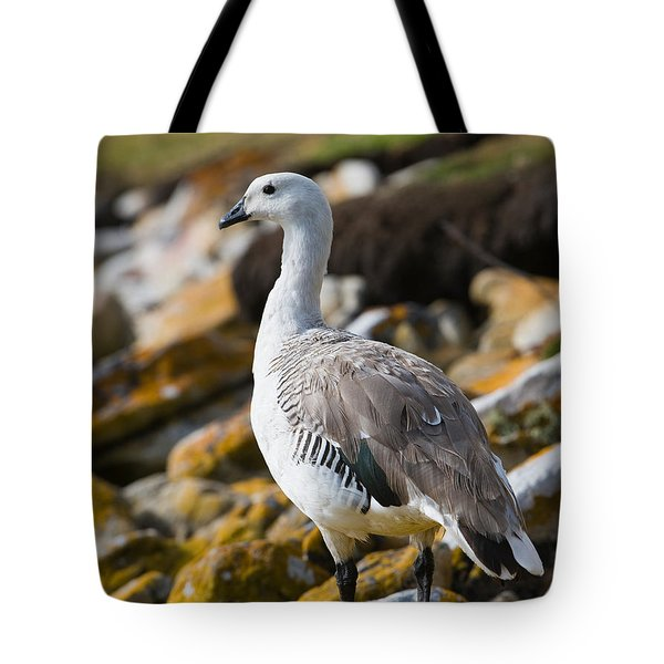 Upland Goose Tote Bag