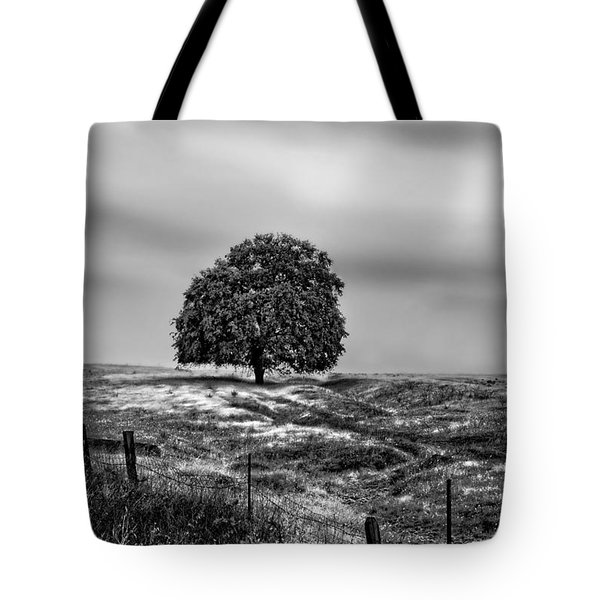 Valley Oak Majesty Tote Bag