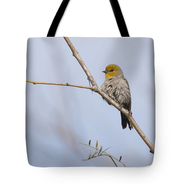 Verdin Tote Bag by Tam Ryan