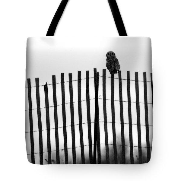 Waiting Owl Tote Bag