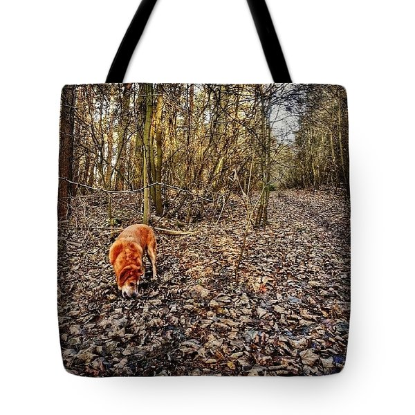 Walking In The Woods Tote Bag