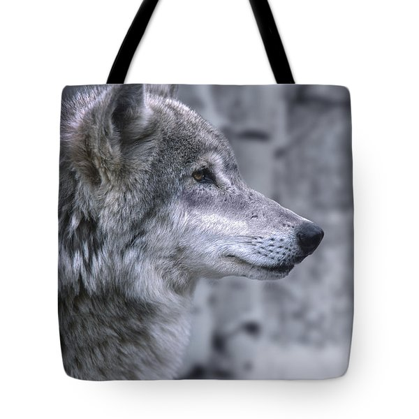 Watching And Waiting Tote Bag by Sandra Bronstein