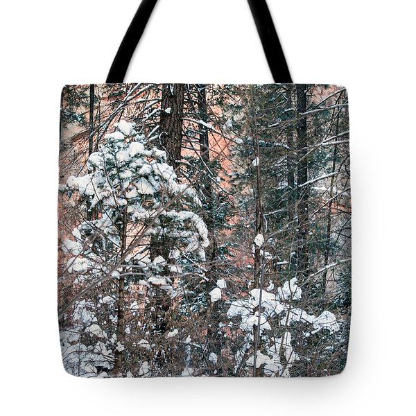 West Fork Snow Tote Bag