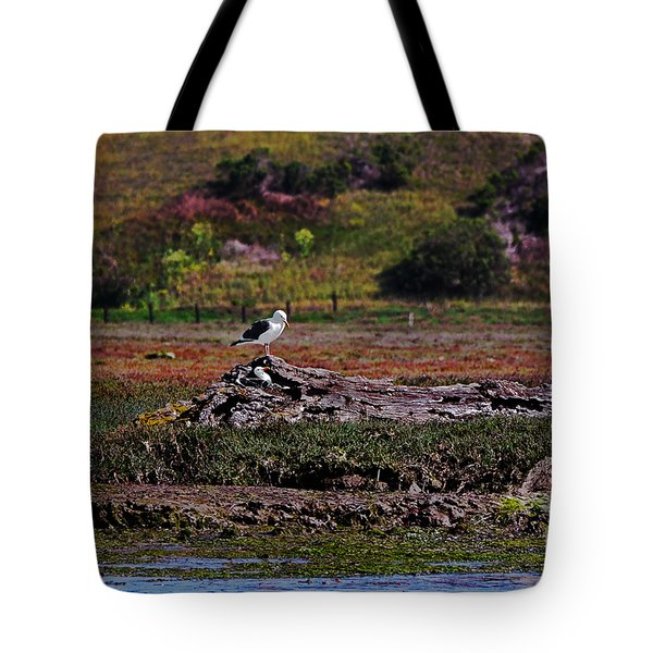 Western Gulls Nesting In A Log Tote Bag