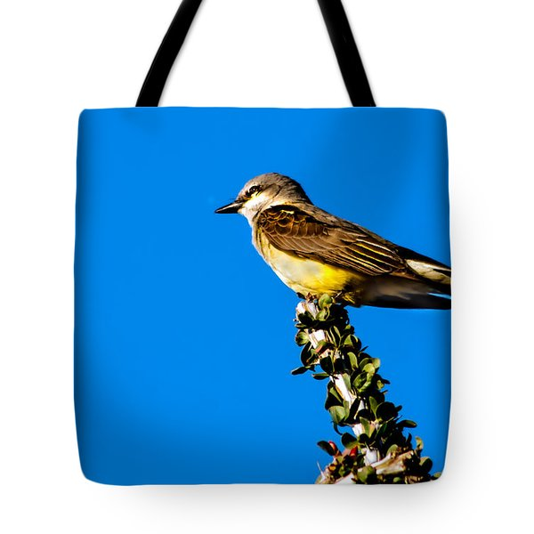 Western Kingbird Tote Bag by Robert Bales