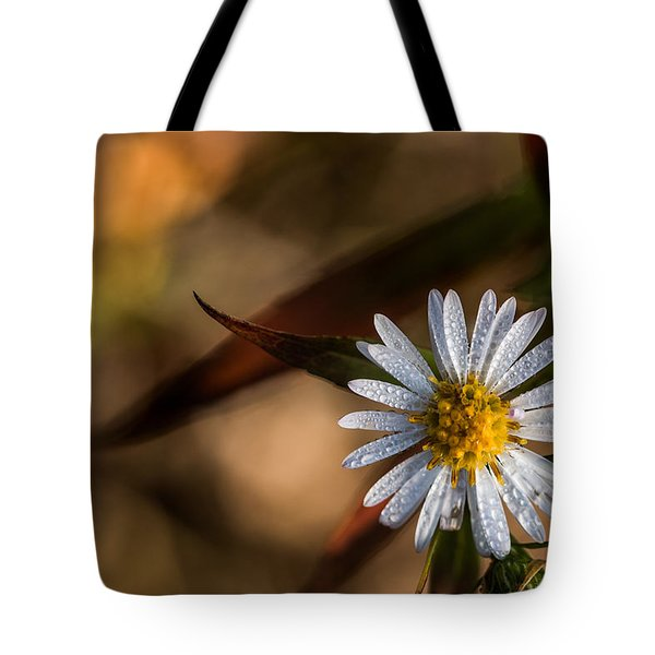 Tote Bag featuring the photograph White Flower Dew-drops Autumn by Jivko Nakev