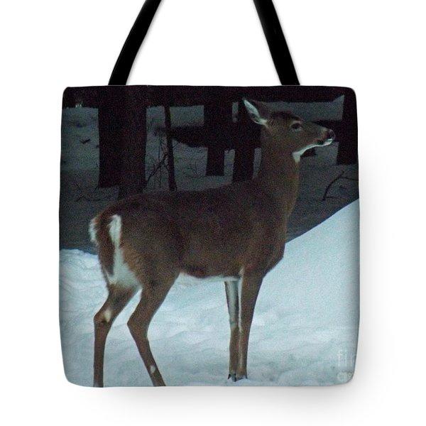 White Tail Deer Tote Bag by Brenda Brown