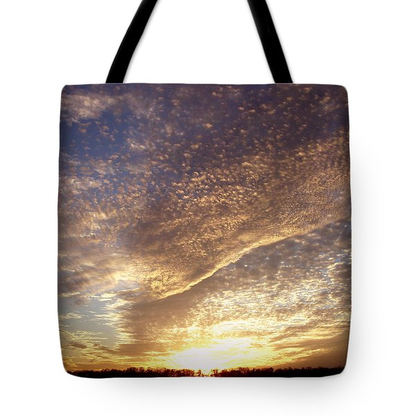 Wild Sky 2 Tote Bag by Cynthia Lassiter
