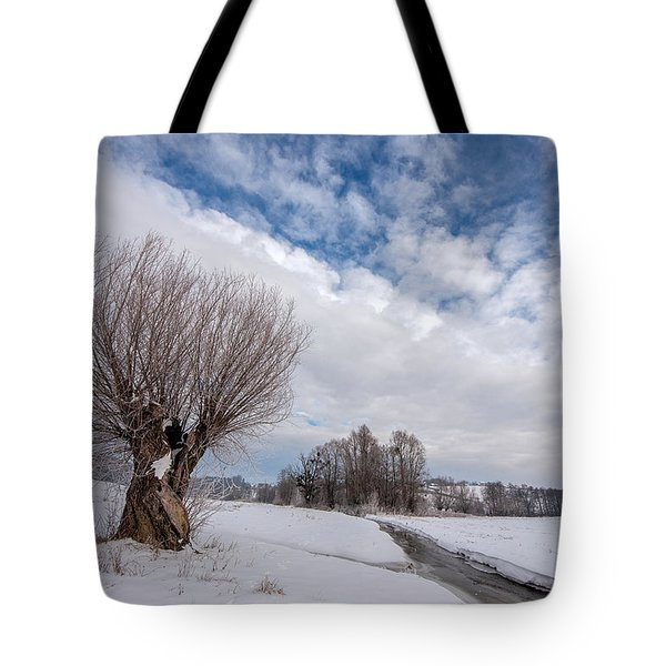 Tote Bag featuring the photograph Willow by Davorin Mance