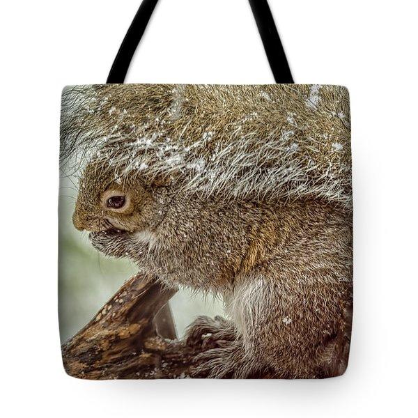 Winter Squirrel Tote Bag by LeeAnn McLaneGoetz McLaneGoetzStudioLLCcom
