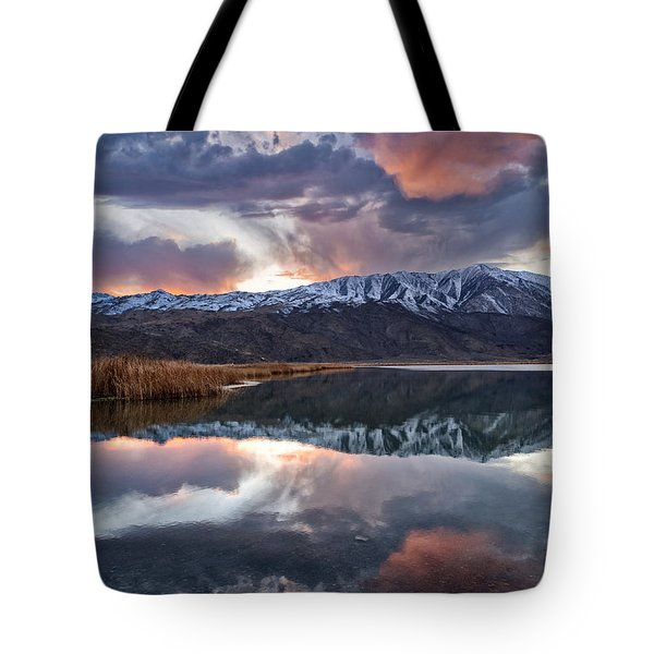 Winter Sunset Tote Bag by Cat Connor