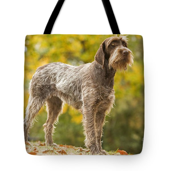 Wire-haired Pointing Griffon Tote Bag