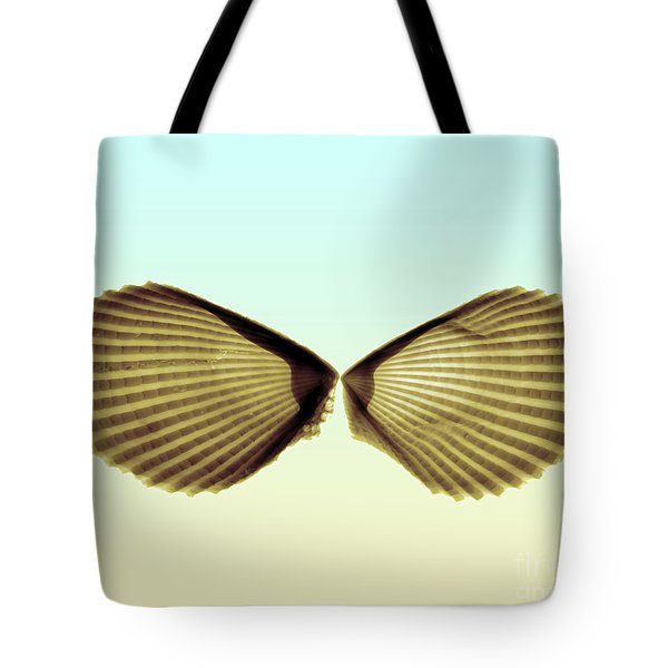 X-ray Of Angel Wing Shells Tote Bag by Bert Myers