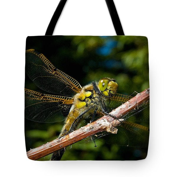 Yellow Dragon Tote Bag by WB Johnston