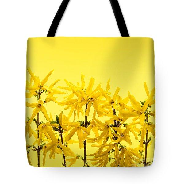 Yellow Forsythia Flowers Tote Bag by Elena Elisseeva