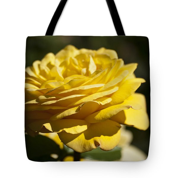 Yellow Rose Tote Bag by Steve Purnell