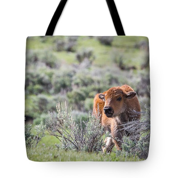 Bison Calf Tote Bag