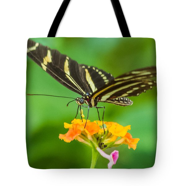 Tote Bag featuring the photograph Zebra Longwing by Jane Luxton