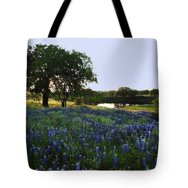Tote Bag featuring the photograph 10 by Susan Rovira