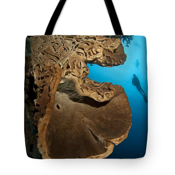 The Salvador Dali Sponge With Intricate Tote Bag by Steve Jones