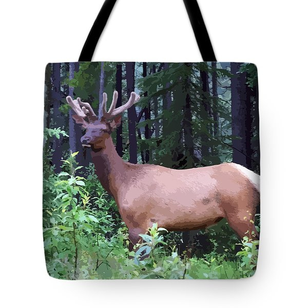 100_0547 Young Bull Elk In Albert Canada Tote Bag