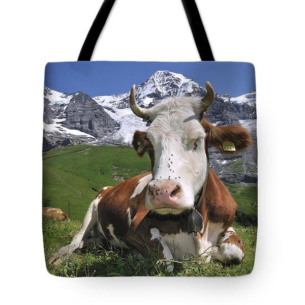100205p182 Tote Bag