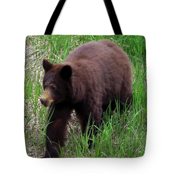 100414 Black Bear Tote Bag