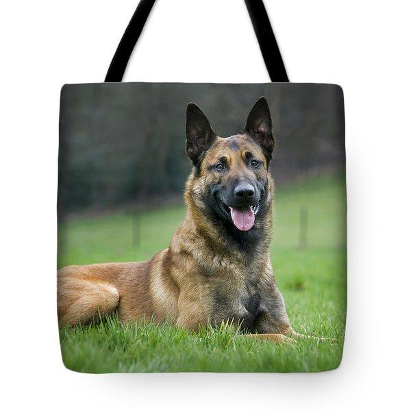 101130p018 Tote Bag