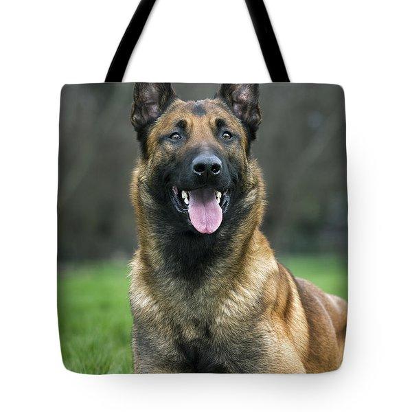 101130p022 Tote Bag