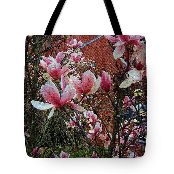 Magnolia Flowers  Tote Bag