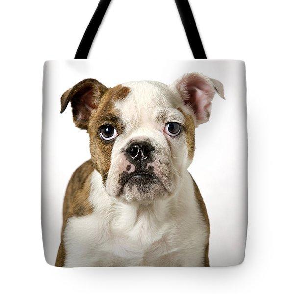 110307p153 Tote Bag