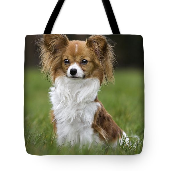 110506p146 Tote Bag by Arterra Picture Library