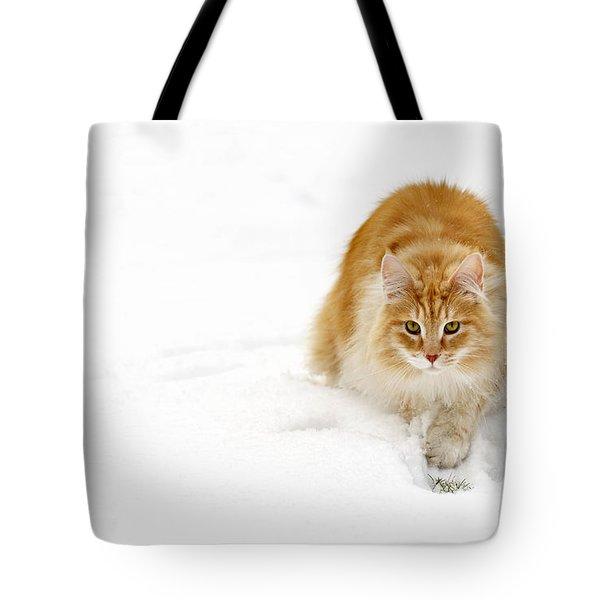 111230p310 Tote Bag