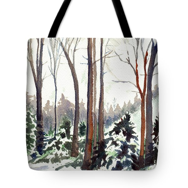 12 Below Tote Bag