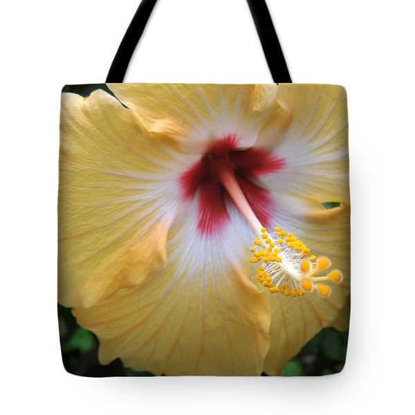 Hibiscus Tote Bag by Ron Davidson