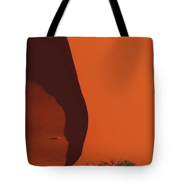 120118p072 Tote Bag