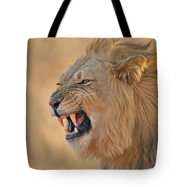 120118p081 Tote Bag