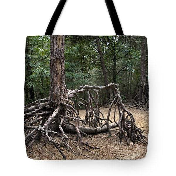 120223p257 Tote Bag by Arterra Picture Library