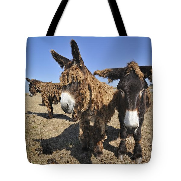 Tote Bag featuring the photograph 120920p029 by Arterra Picture Library
