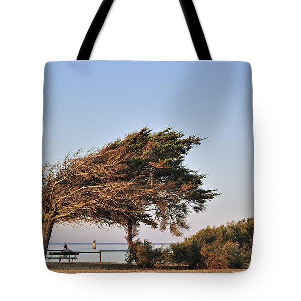 Tote Bag featuring the photograph 120920p153 by Arterra Picture Library