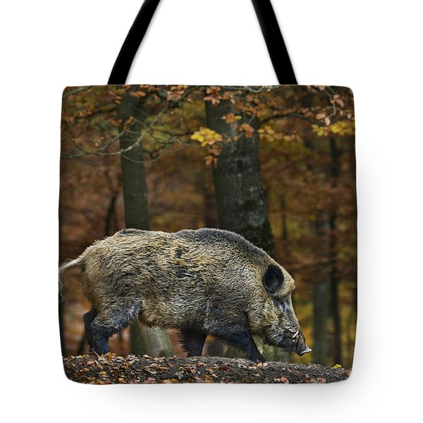 Tote Bag featuring the photograph 121213p284 by Arterra Picture Library